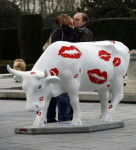 People kiss for a photo by a fibreglass sculpture of a cow in central Madrid as part of the CowParade exhibition