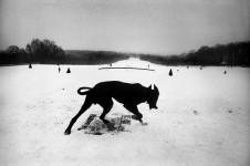 Josef Koudelka. Francia, 1987.