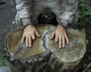 Danila Tkachenko. Untitled, 2013. Edición Platform 2015