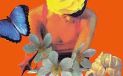 Nunca me imaginé… (Cover detail), 1995.