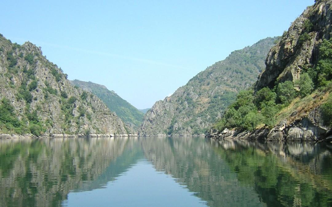 Becas de investigación en Galicia