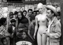 Nacho López. La Venus se fue de juerga.