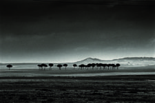 Alberto Schommer, Serie Paisajes negros, 1957 – 2007