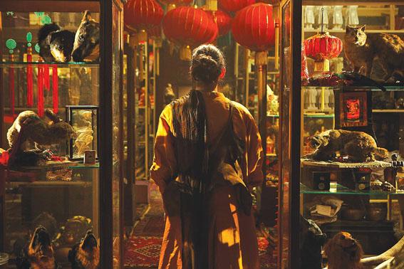 Fiona Tan: Visiones de desoriente